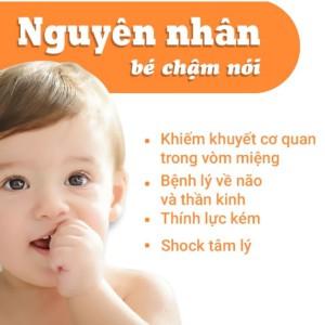 Trẻ Chậm Nói Hoặc Phát Triển Ngôn Ngữ